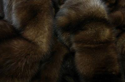 Продам шкурки соболя (Москва) RosМех - весь русский мех